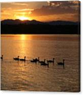 Sunset With Geese 2 Canvas Print