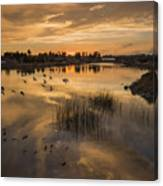Sunset With Pigeons Canvas Print