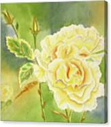 Sunshine And Yellow Roses Canvas Print