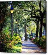 Sunshine On Savannah Sidewalk Canvas Print