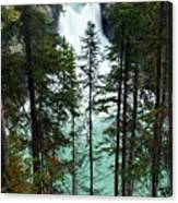Sunwapta Canyon Canvas Print