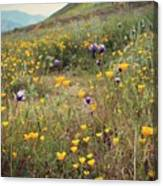 Super Bloom Canvas Print