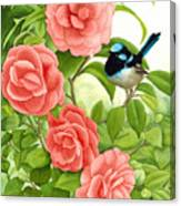 Superb Wren And Camellia Canvas Print