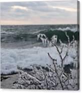 Superior January Waves Canvas Print