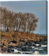 Superior Shore Canvas Print