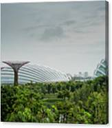 Supertrees At Gardens By The Bay Canvas Print