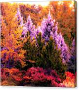 Sureal Forest Canvas Print
