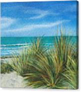 Surf Beach Canvas Print