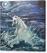White Spirit Canvas Print