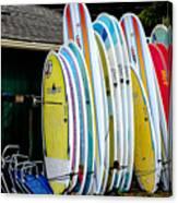 Surf Lessons Canvas Print