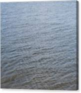 Surface Water Canvas Print