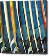 Surfboards Canvas Print