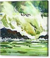 Surfers Dream Canvas Print
