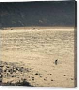Surfing At Leo Carrillo Beach Canvas Print