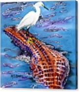 Surfing The Gator Canvas Print