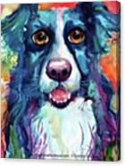Surprised Border Collie Watercolor Canvas Print