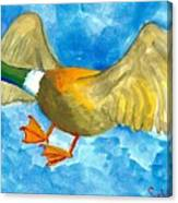 Surprised Flying Duck Detail Of Duck Meets Fairy Ballet Class Canvas Print