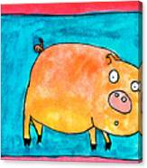 Surprised Pig Canvas Print