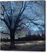 Surreal Fantasy Fairytale Blue Starry Trees Landscape - Fantasy Nature Trees Starlit Night Wall Art Canvas Print