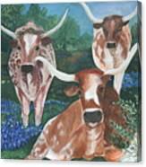 Survivors Canvas Print