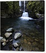 Susan Creek Falls Oregon 1 Canvas Print