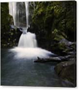 Susan Creek Falls Oregon 2 Canvas Print