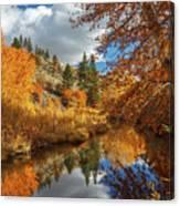 Susan River Reflections Canvas Print