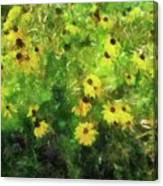 Susan's Field Canvas Print