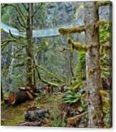 Suspended In The Rain Forest Canvas Print