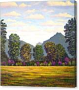 Sutter Buttes In Springtime Canvas Print