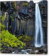 Svartifoss Waterfall - Iceland Canvas Print