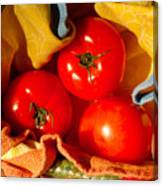 Swaddled Tomatoes Canvas Print