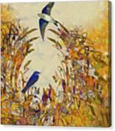 Swallow Tale Canvas Print