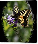 Swallowtail Butterfly 1 With Swirly Frame Canvas Print
