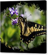 Swallowtail Butterfly 2 With Swirly Framing Canvas Print