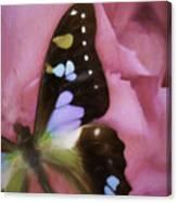 Swallowtail Dreams Canvas Print