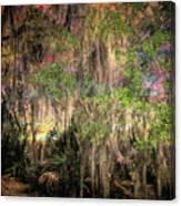 Swamp 2 Canvas Print