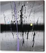 Swamp 2008 Canvas Print
