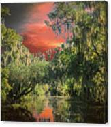 Swamp 1 Canvas Print