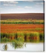 Swamp And Field Landscape Autumn Season Canvas Print