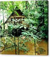 Swamp Hut In Honduras Canvas Print