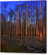 Swamp In Cypress Gardens Canvas Print