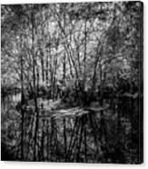 Swamp Island Canvas Print
