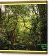 Swamp L A With Decorative Ornate Printed Frame. Canvas Print