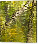 Swamp Reflections Abstract Canvas Print