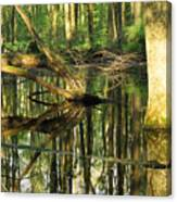 Swamps Are Beautiful Too Canvas Print