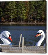 Swan Boats Canvas Print