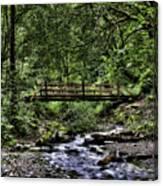 Swan Creek Park Canvas Print