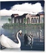 Swan Island Canvas Print