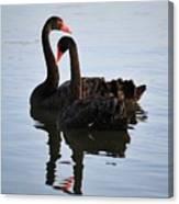 Swan Lake 5 Canvas Print